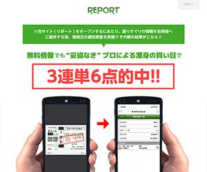 REPORT(リポート) 口コミ・捏造・評価まとめ